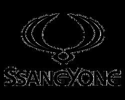 MIDCar Ssangyong de ocasión en Madrid Torrejón de Ardoz